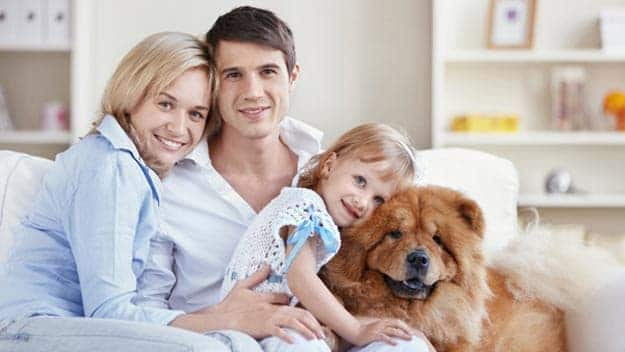 Wills & Trusts dog-young-family Direct Wills Wimbledon Common